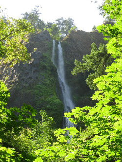 Starvation Creek Falls in Columbia River Gorge. Photo: KGilb.